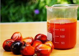 Health benefits of palm oil